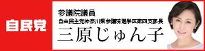 banner300x75
